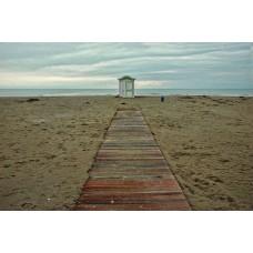 Absence - Grado #2