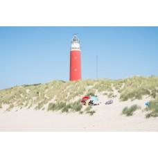 Frisian Islands - Texel #5