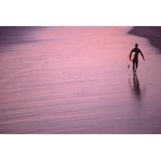 Venice beach - Surfer at sunset
