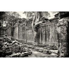 Angkor Wat #1