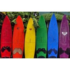 Hawaii -  Surfboard - Maui