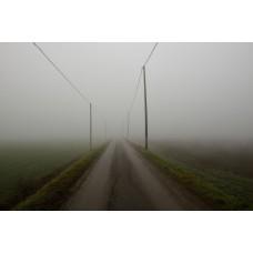 Fog #4
